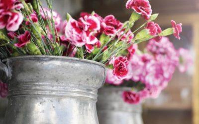 Blumenmarkt 2020 – ABGESAGT